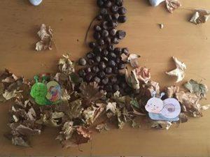 création land art avec des marrons et des feuilles