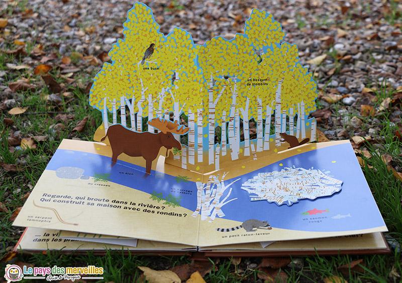 "illustration animée du livre ""automne"""