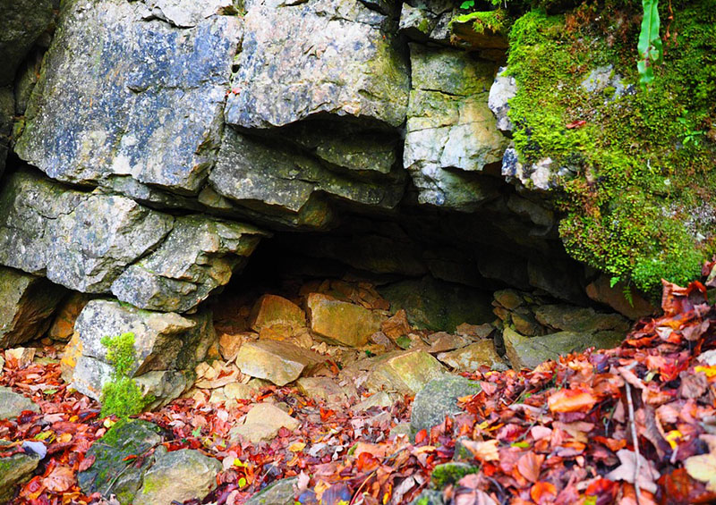 photo d'une grotte en automne