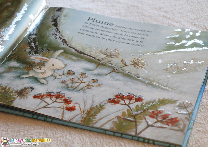 Livre de Noël avec des illustrations brillantes