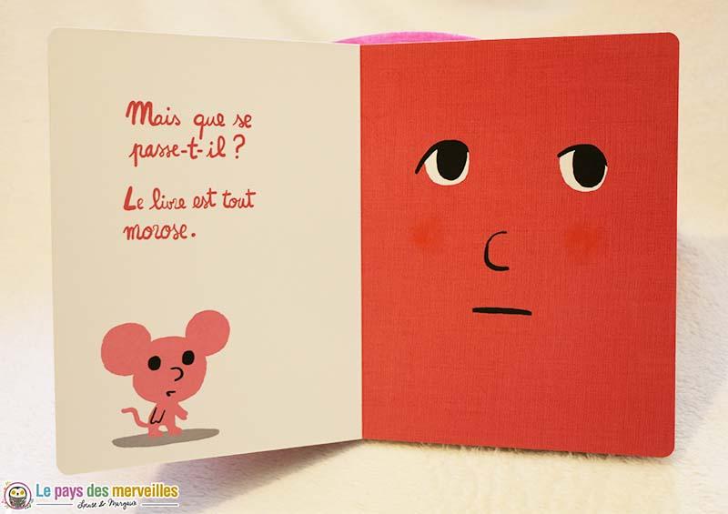 Illustration du livre amoureux