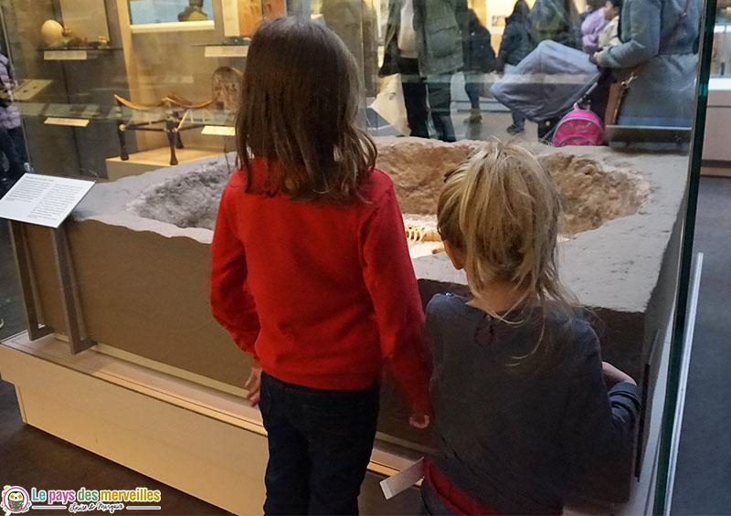 """British museum momie """"Ginger"""""""