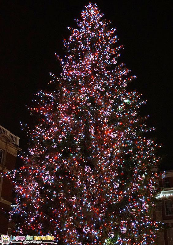 Sapin géant Covent Garden la nuit