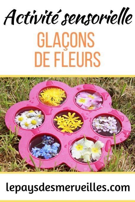 Activité sensorielle avec des glaçons de fleurs