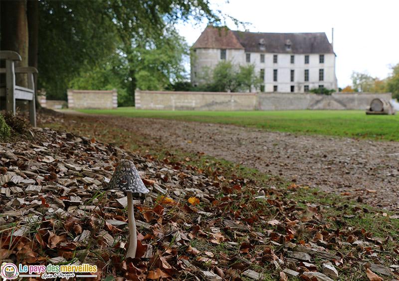 La natured'automne au château d'Harcourt