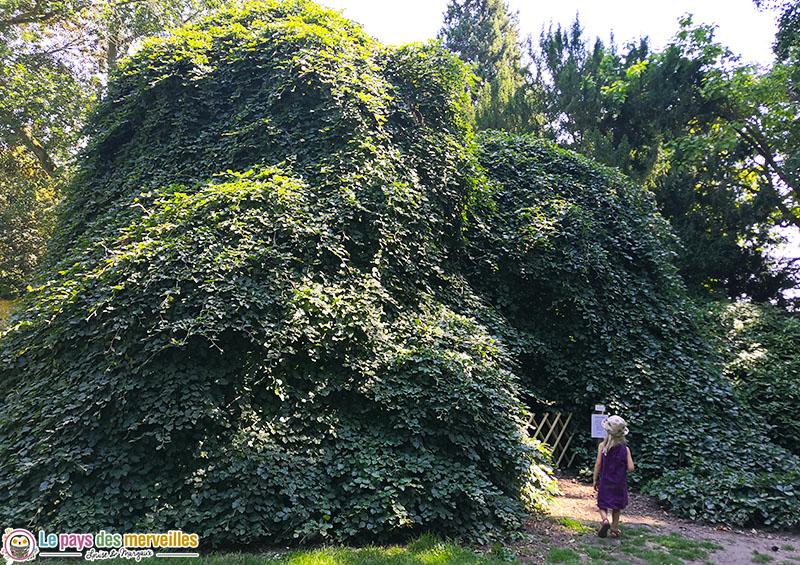 arbre cabane au domaine d'Harcourt