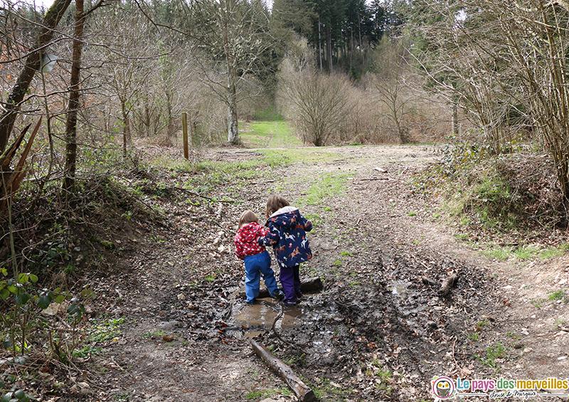 Sortir en forêt avec les enfants