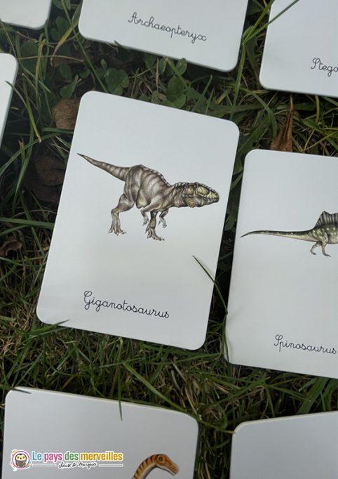 Cartes Montessori legendées dinosaures