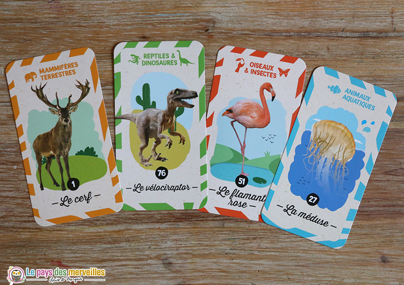 Cartes questions animaux