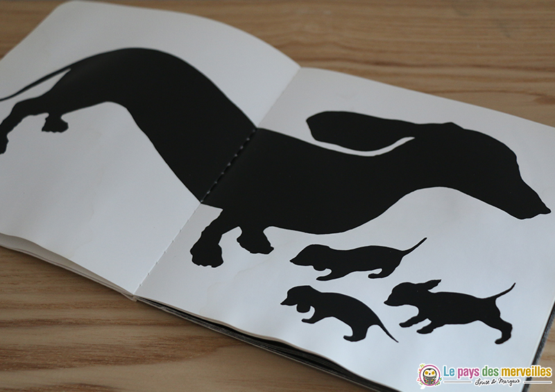double page animaux contraste