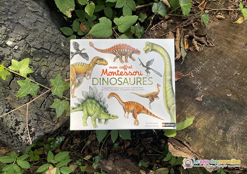 Mon coffret Montessori dinosaures éditions Nathan