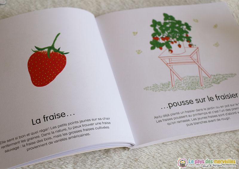 Où est comment pousse la fraise