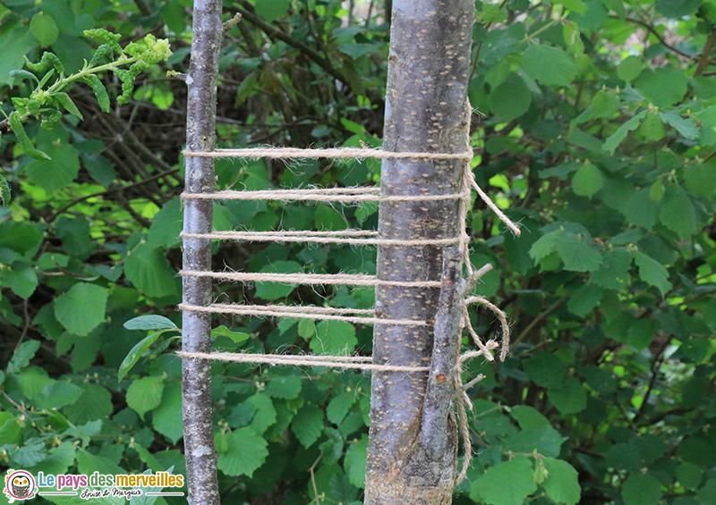 Corde nouée entre deux arbres