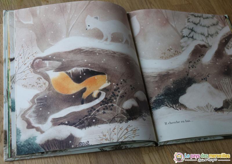 dessins du livre Tout seul de Rosemary Shojaie