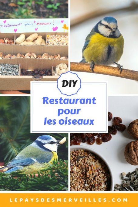 Mangeoire restaurant pour les oiseaux