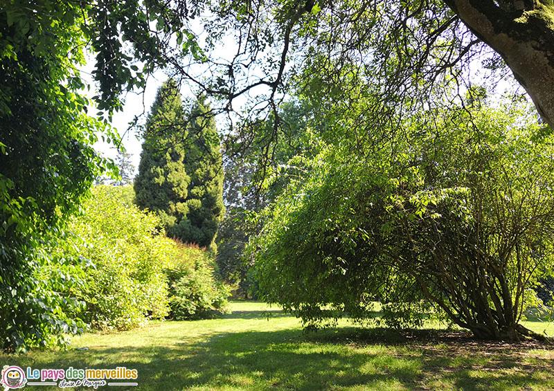 Arboretum d'Harcourt en été