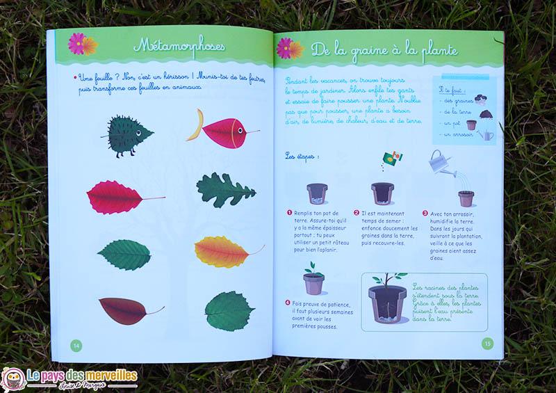 Activité Montessori sur le thème de la nature