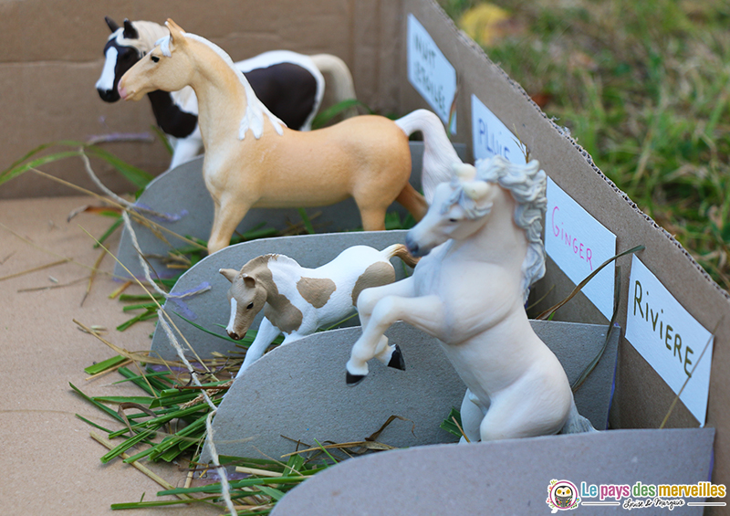 box pour chevaux