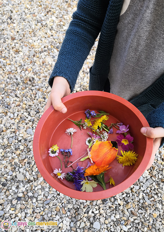 ramasser des fleurs pour faire un glaçon