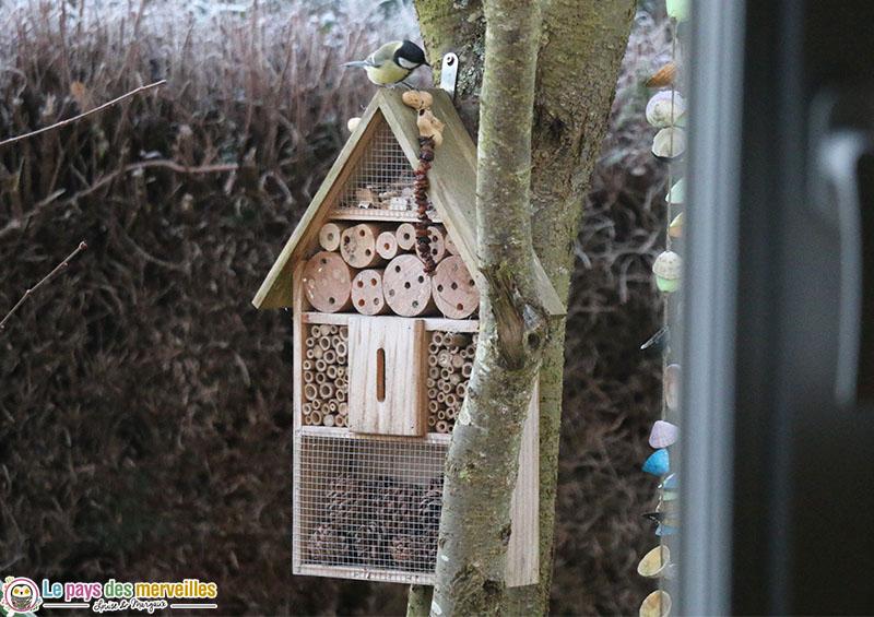 Nourriture pour oiseaux du jardin