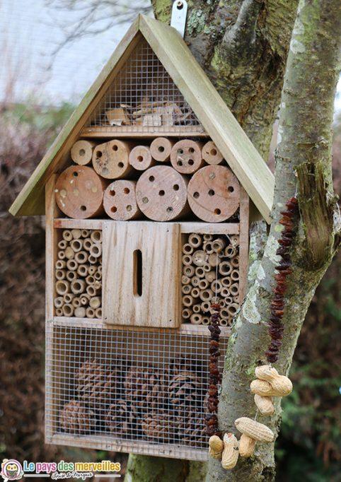 Guirlande de raisins secs et de cacahuètes pour les oiseaux du jardin