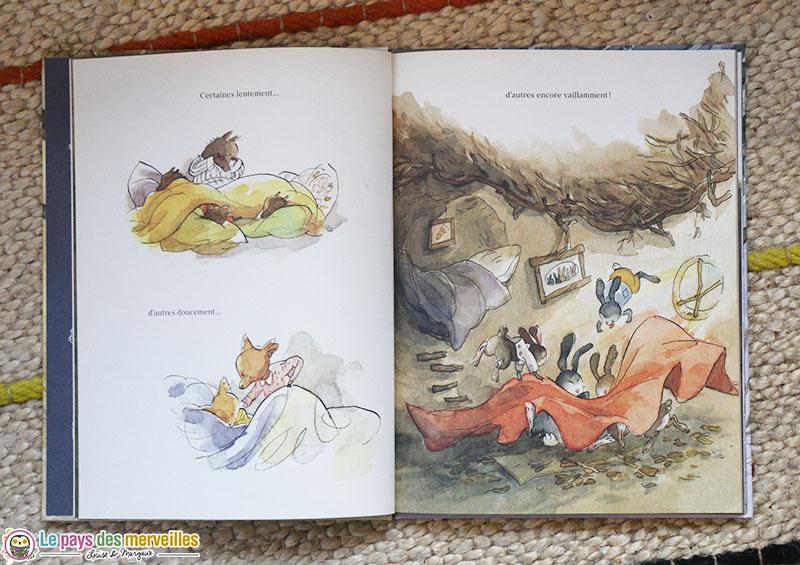 Illustrations de Qin Leng dans le livre l'abri