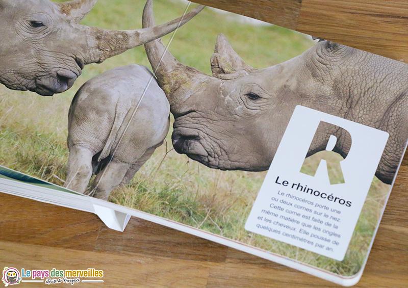 Imagier des animaux avec des photos réelles de Naturagency
