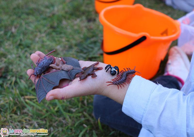 Insectes en plastique