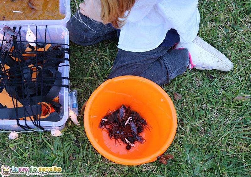 Seau d'Halloween avec des insectes en plastique