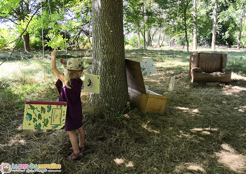 Livres suspendus dans les arbres au domaine d'Harcourt