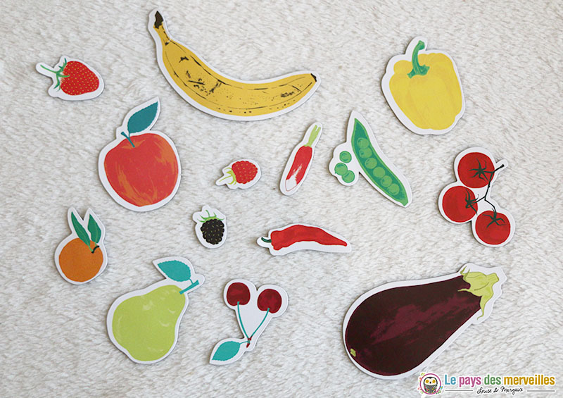 magnets fruits