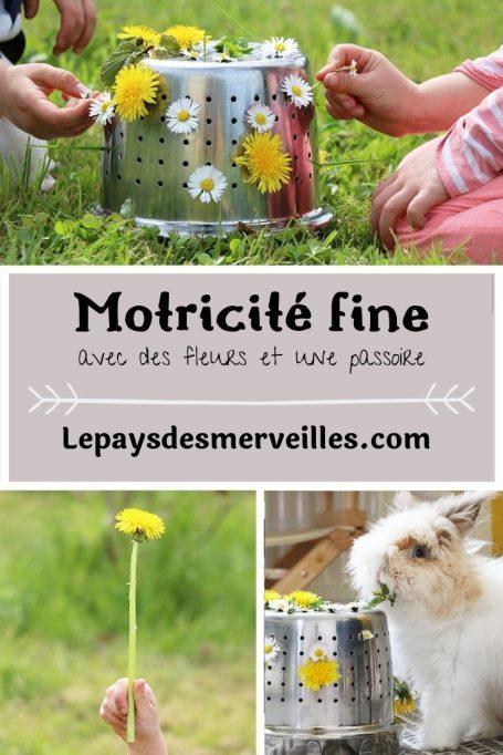 Activité de motricité fine avec des fleurs et une passoire