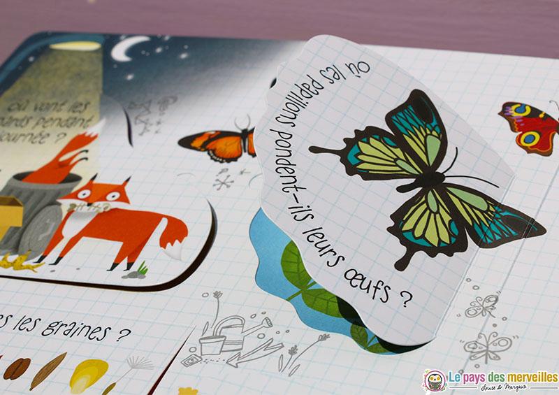 Où les papillons pondent-ils leurs oeufs ?
