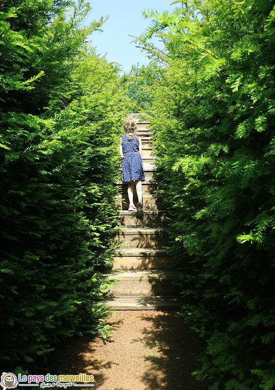 Passerelle du labyrinthe de Thoiry