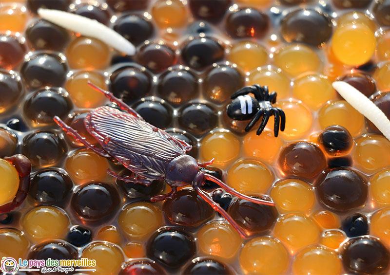 Bac sensoriel avec des perles d'eau et des insectes pour Halloween