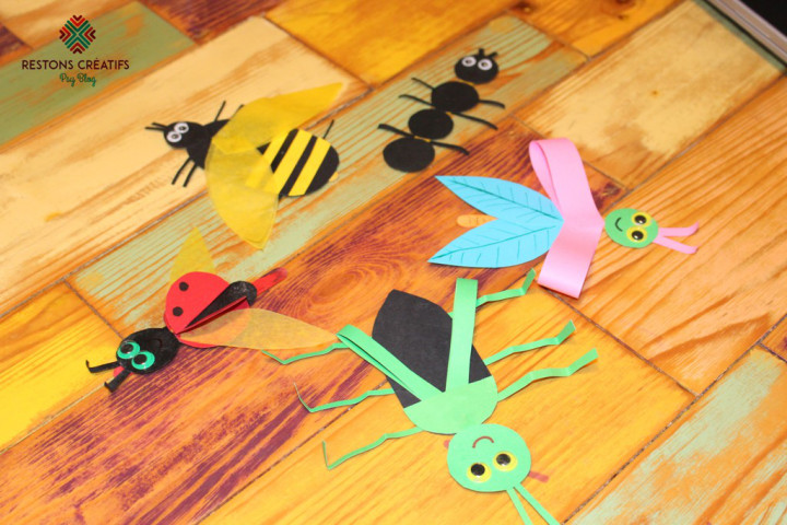 insectes en papier