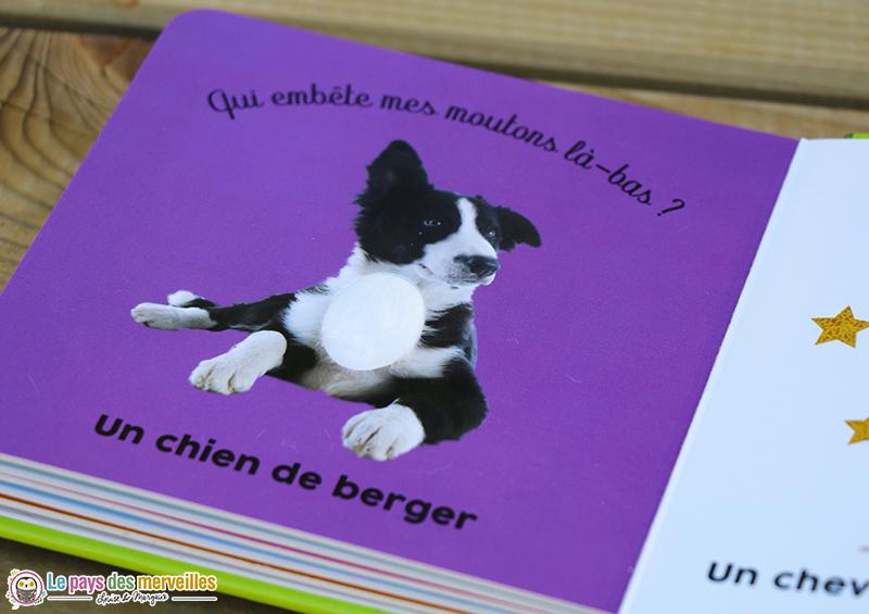 livre à toucher chien