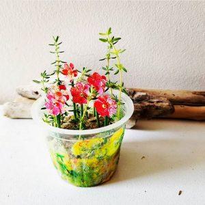 pot de fleurs récup'