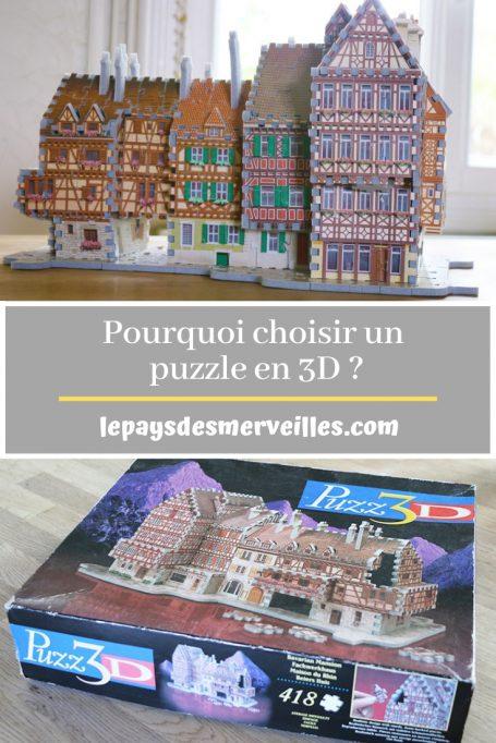 Pourquoi choisir un puzzle 3D