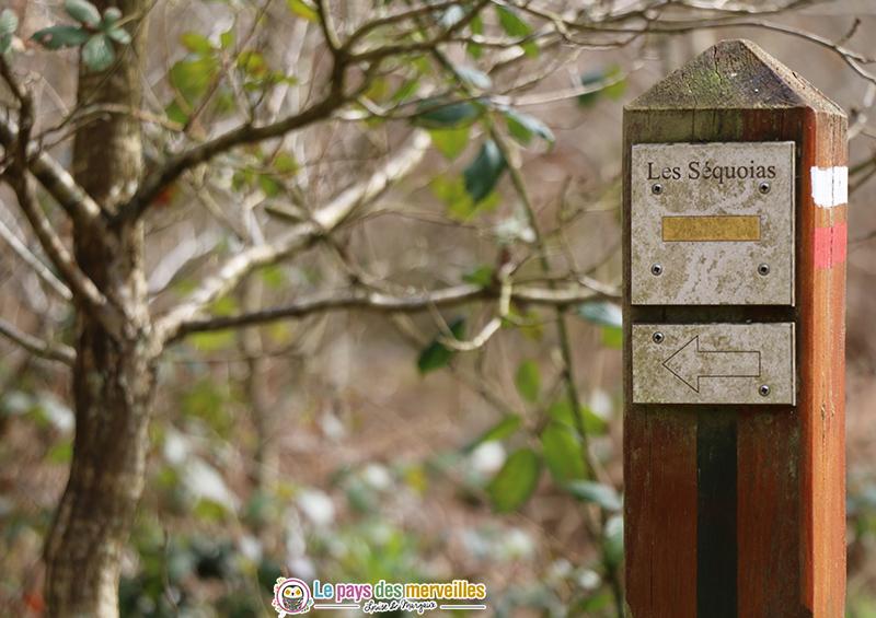 chemin des Séquoias Montfort-sur-risles