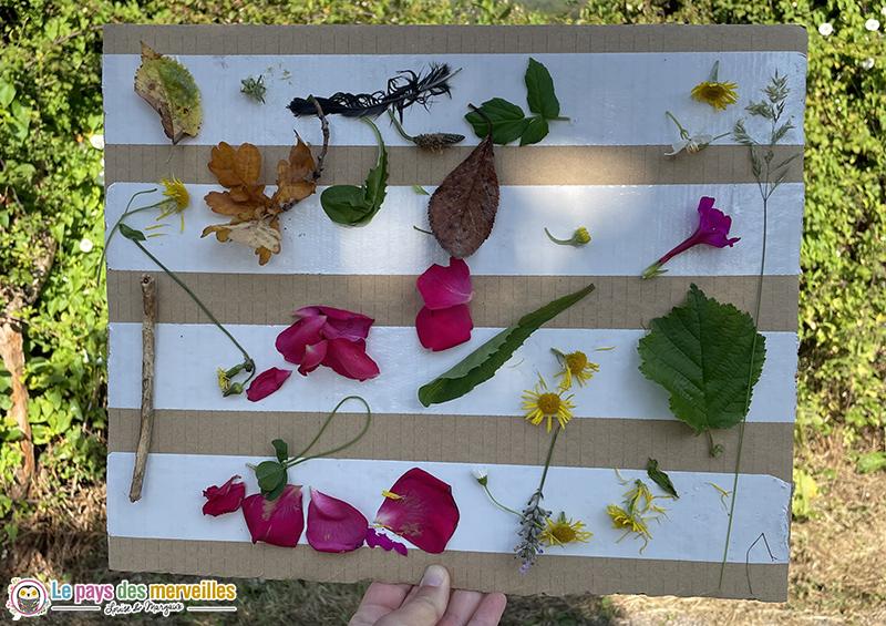 tableau nature en carton avec des fleurs et des feuilles